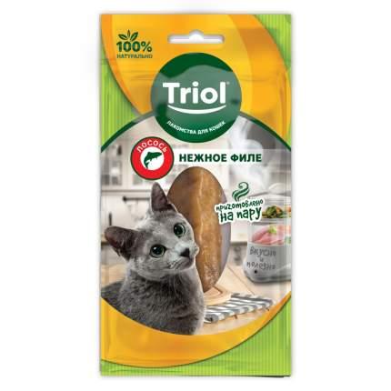 Лакомство для кошек Triol, филе лосося, 1шт, 20г