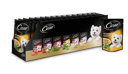 Влажный корм для собак Cesar, курица с зелеными овощами, 24шт, 100г