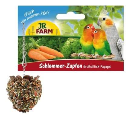 Лакомства для птиц JR Farm Лакомая шишка