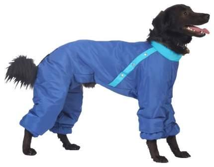 Комбинезон для собак ТУЗИК Французский бульдог мужской, в ассортименте, длина спины 36 см