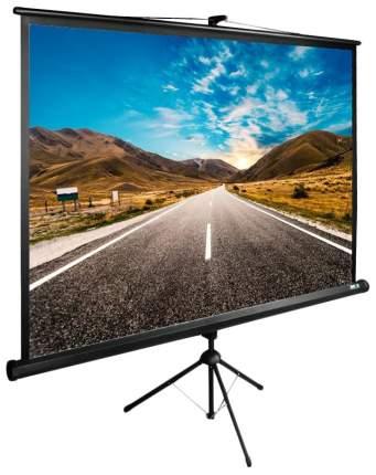 Экран для видеопроектора Cactus TriExpert CS-PSTE-160X160-BK