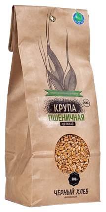 Крупа пшеничная Черный хлеб цельная 500 г