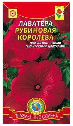 Семена Лаватера Рубиновая королева, 0,1 г Плазмас