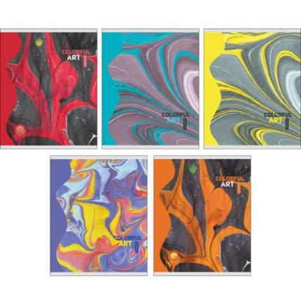 "Тетрадь ""Взрыв цвета"" (А5, 48л, клетка, скрепка), ТКГ485665"