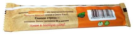 Флакс-батон Компас здоровья энерджи гречневый 20 г