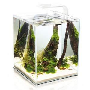 Аквариумный комплекс для рыб, креветок Aquael Shrimp Set Smart LED Plant ll, белый, 19 л