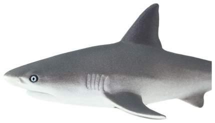 Фигурка Safari ltd Серая рифовая акула