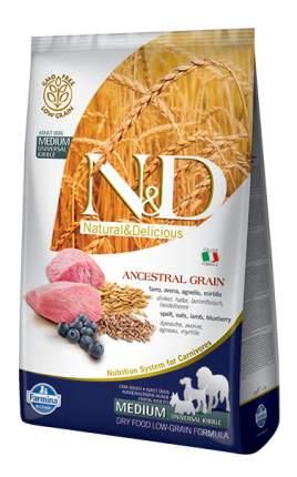 Сухой корм для собак Farmina N&D Medium, для средних пород, ягненок и черника, 12кг