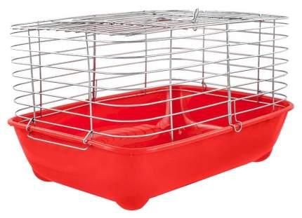 Клетка для морских свинок Дарэлл 36х30х42см