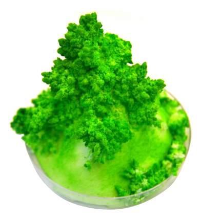 Набор для выращивания кристаллов Good Fun Живые кристаллы зеленый