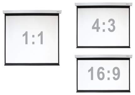 Экран для видеопроектора Digis Electra-F DSEF-1108 Черный
