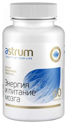 Добавка для памяти Astrum Энергия и питание мозга 60 капс. натуральный