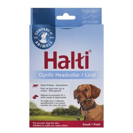 Недоуздок для собак COA HALTI OptiFit, S, черный, шея 24-40 см