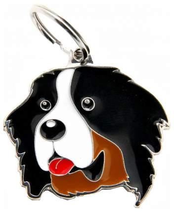 Адресник для собак My Family Friends Бернский зенненхунд (2,5 х 2,5 см, )