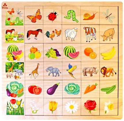 Развивающая игра Мастер игрушек Ассоциации - Природа