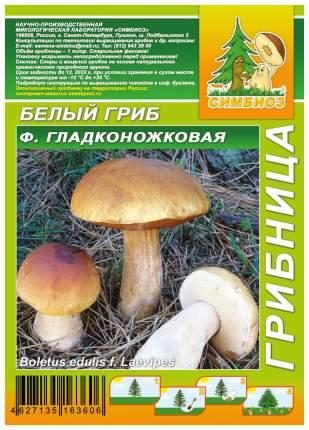 Мицелий грибов Грибница субстрат микоризный Белый гриб Гладконожковый, 1 л Симбиоз