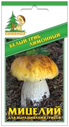 Мицелий грибов Зерновой Белый гриб Лимонный, 30 мл Симбиоз