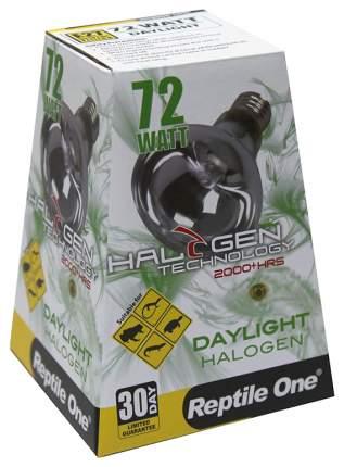 Галогенная лампа Reptile One Halogen Heat Lamp Daylight 72Вт