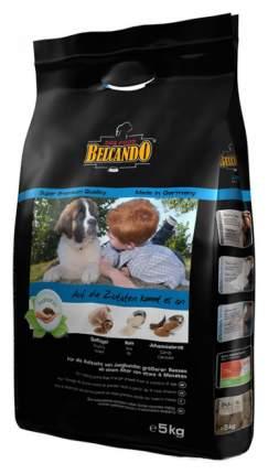 Сухой корм для щенков BELCANDO Junior Maxi, птица, 5кг