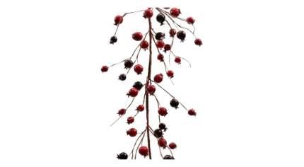 Декоративные ягоды KAEMINGK 621345 130 см