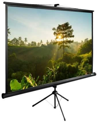 Экран для видеопроектора Cactus TriExpert CS-PSTE-200Х200-BK