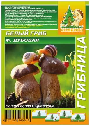 Мицелий грибов Грибница субстрат микоризный Белый гриб форма Дубовая, 1 л Симбиоз