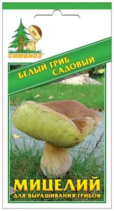 Мицелий грибов Зерновой Белый гриб Садовый, 30 мл Симбиоз