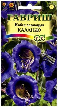 Семена Кобея лазающая Каландо, 5 шт, Гавриш