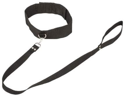 Ошейник Lola Toys Bondage Collection Collar and Leash Plus Size