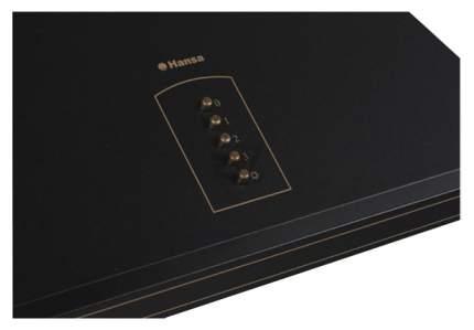 Вытяжка купольная Hansa OKC 613 RBH Black/Gold