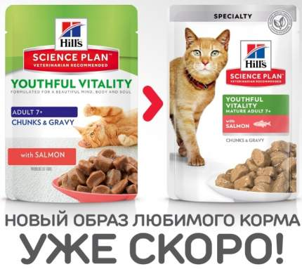 Влажный корм для кошек Hill's Science Plan Youthful Vitality, лосось, 12шт, 85г