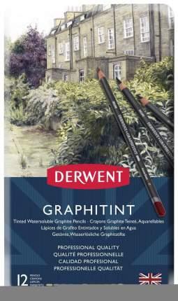 Карандаши цветные Derwent Graphitint 700802 12 шт