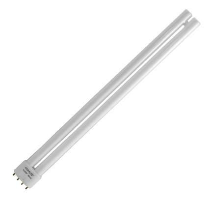 Jebo Лампа 36W для светильника JL60S