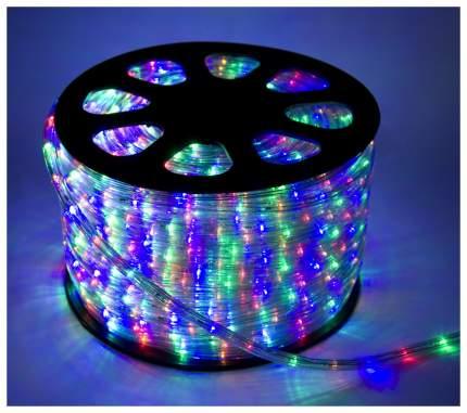 Дюралайт XMAS-GROUP DL-LED-100-3TC Разноцветный