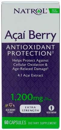 Антиоксидант Natrol AcaiBerry Extra Strength 60 капс. натуральный