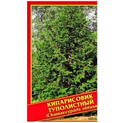 Семена Кипарисовик Туполистный, 0,2 г Симбиоз
