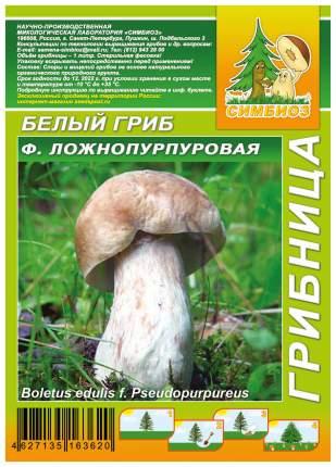 Мицелий грибов Грибница субстрат микоризный Белый гриб Ложнопурпуровый, 1 л Симбиоз