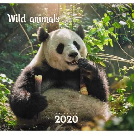 Календарь 2020 Дикие животные. Панда (скрепка), КС62015