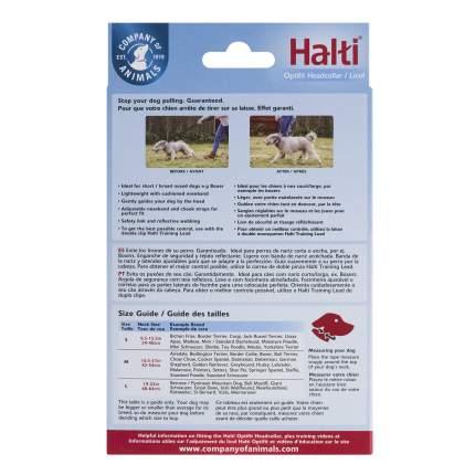 Недоуздок для собак COA HALTI OptiFit, L, черный, шея 48-64 см