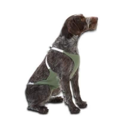 Бандаж абдоминальный Kruuse Abdominal Bandage эластичный для собак (XXL)
