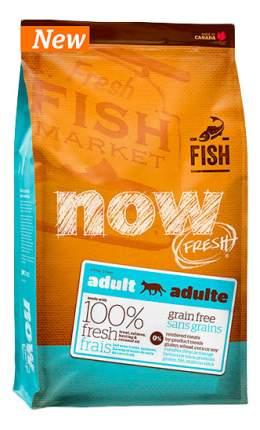 Сухой корм для кошек NOW Fresh GF, беззерновой, лосось, форель, 0,23кг