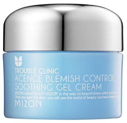 Крем для лица Mizon Acence Blemish Control Soothing Gel Cream 50 мл