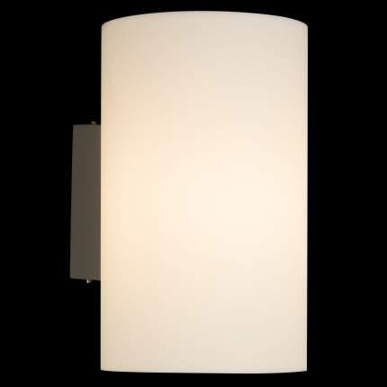 Настенный светильник Maytoni O008WL-01S