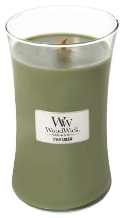 Ароматическая свеча WoodWick Evergreen 791-318 Зеленый
