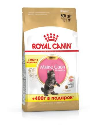 Сухой корм для котят ROYAL CANIN Maine Coon Kitten, мейн-кун, домашняя птица, 0,8кг