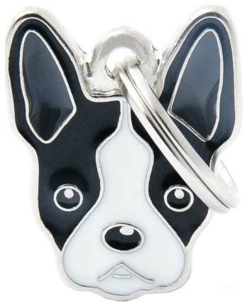Адресник для собак My Family Friends Бостон-терьер (2,5 х 2,5 см, )