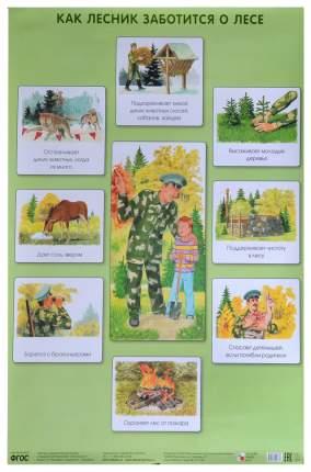 Плакат как лесник Заботится о лесе