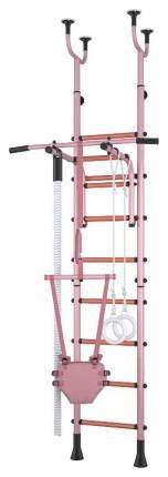 Детский спортивный комплекс Polini Sport Neo Розовый враспор