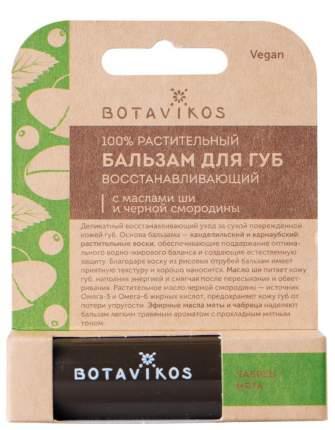 Бальзам для губ Botavikos Восстанавливающий 4 г