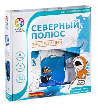 Логическая игра Bondibon Северный полюс. Экспедиция арт. SG 205 RU